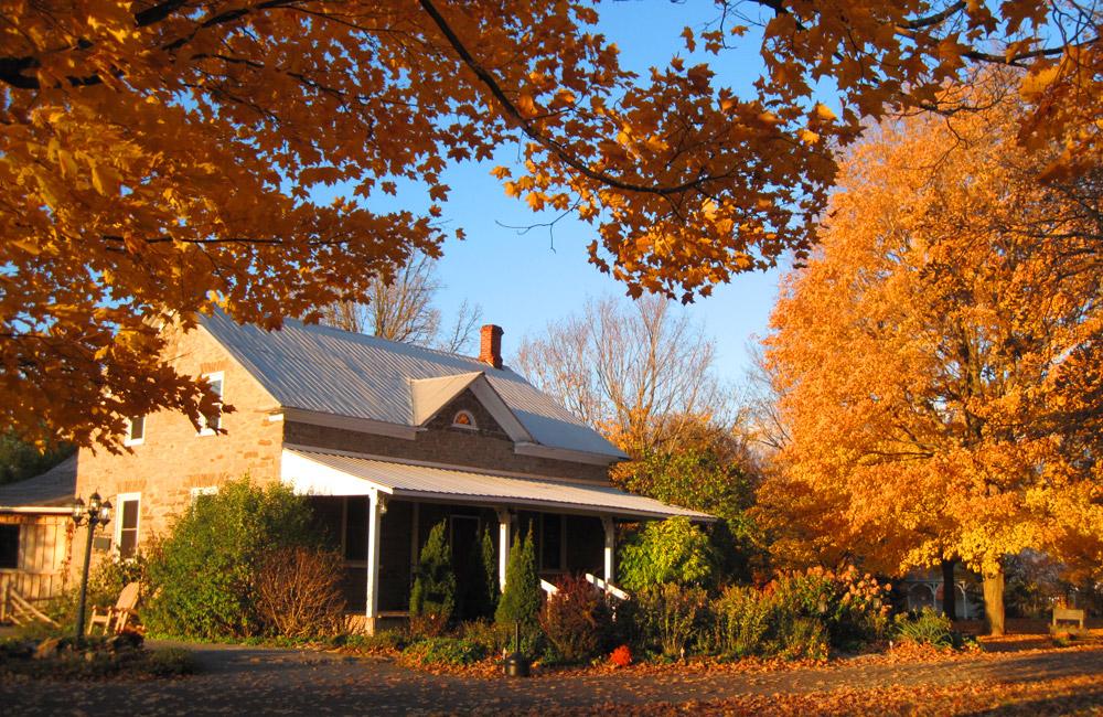 stanleys-farm-fall-barn