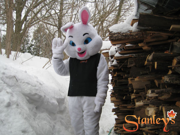 the easter bunny waves