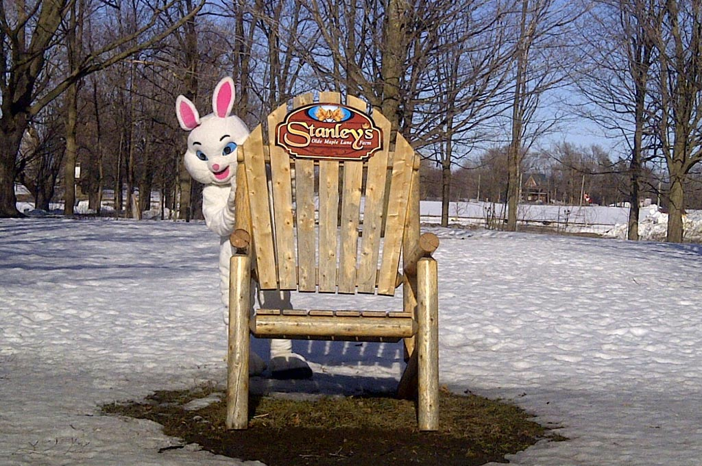 The easter bunny hiding behind large chair