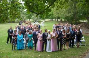 wedding couple and guests with carriage in background