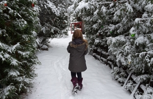 young person walks through tall trees in winter