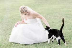 bride petting small cat