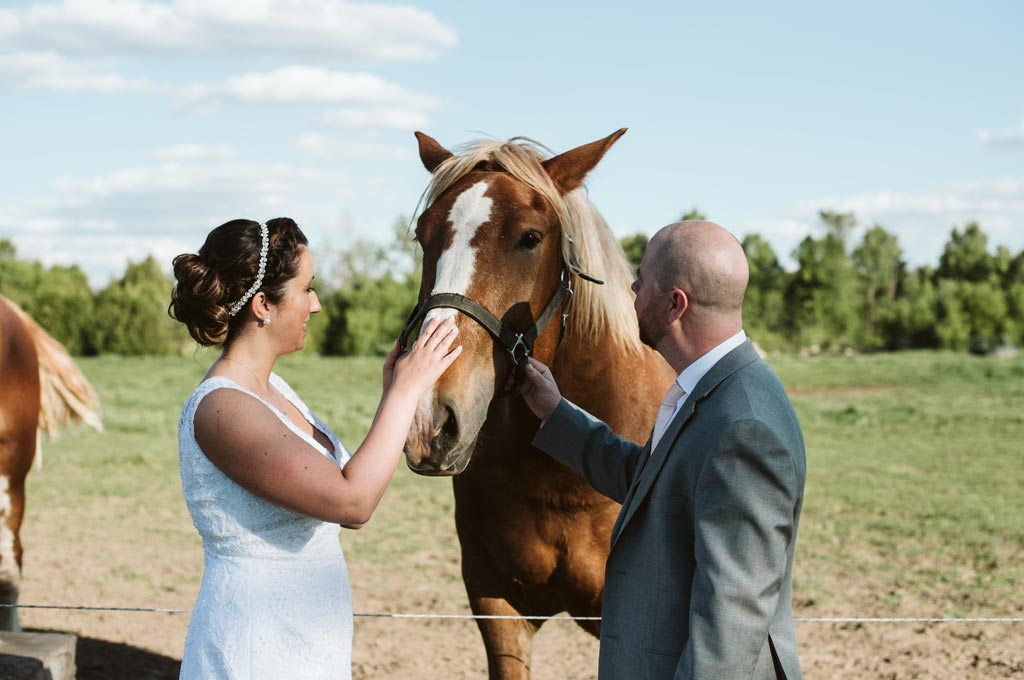 couple greet and pet a horse