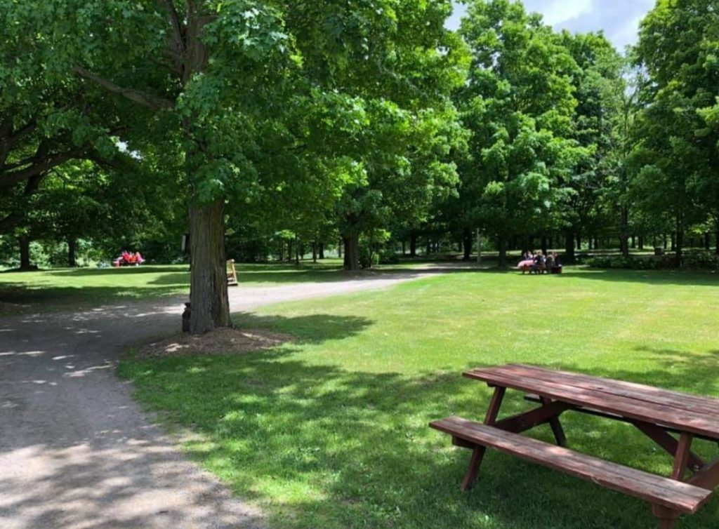 picnic tables on Stanley's Farm